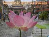 Исцеляющая мантра Будды + фотопутешествие по буддийским странам