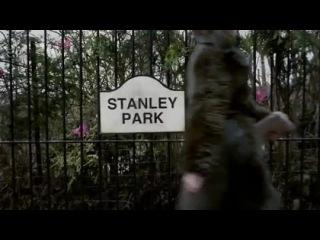 Стэнли Парк / Stanley Park (2010)