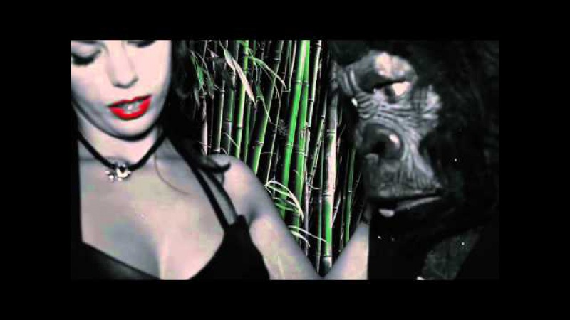 Messer Chups - Curse of Stephen Kong