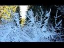 Snowrun around Olallie Lake