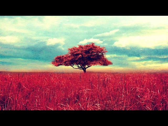Healing Tambura - Root Chakra