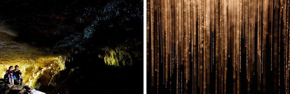 25 сказочных мест со всей планеты (Пещера светлячков, Новая Зеландия)