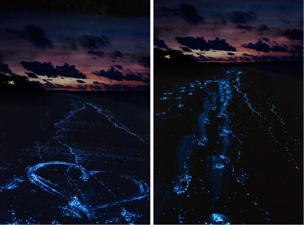 25 сказочных мест со всей планеты (Пляж на острове Ваадху, Мальдивские острова)