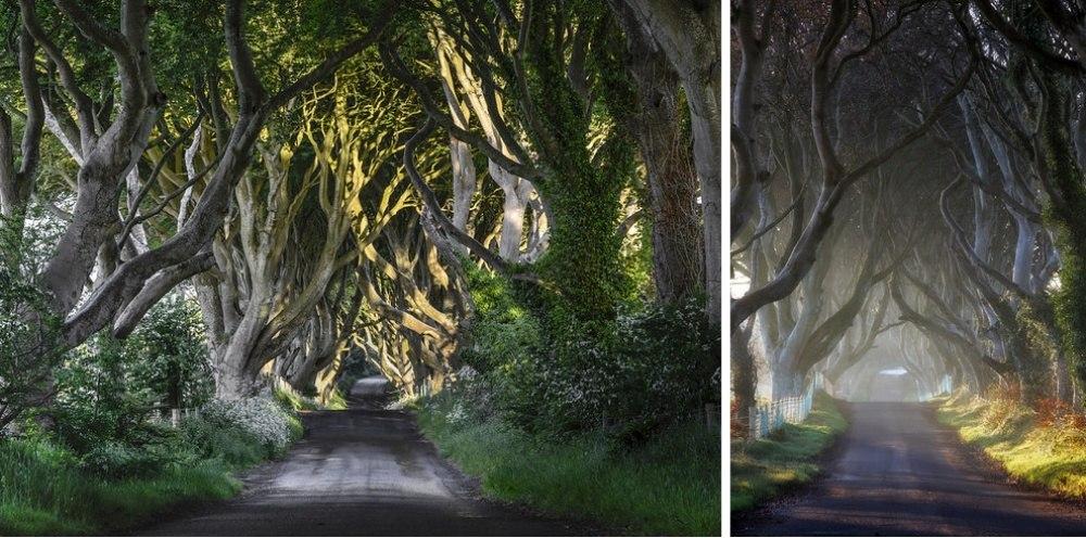 25 сказочных мест со всей планеты (Темная аллея, Ирландия)