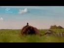 Effy and Freddie- Freddies dead- My skin (1)