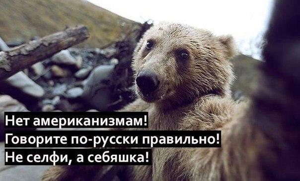 http://cs622019.vk.me/v622019872/2b3ec/5u9b44bntCY.jpg