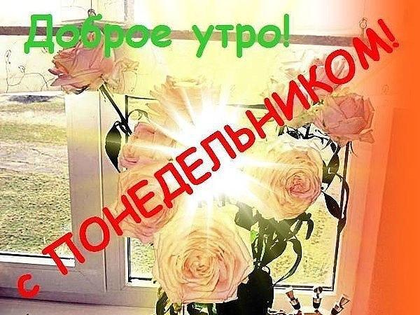http://cs622020.vk.me/v622020044/f9dc/Pfhq5xIX0Bw.jpg