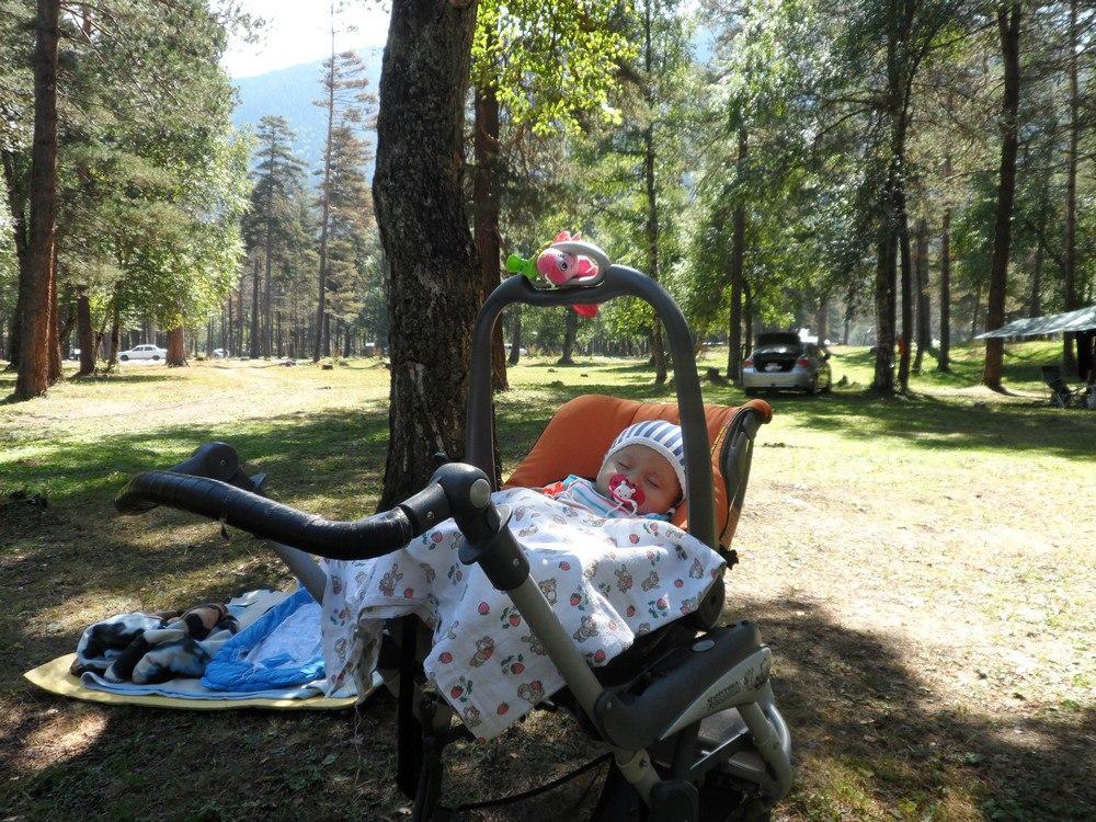 Архыз 0+. Семейный горный лагерь!