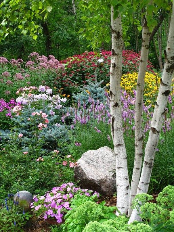 Клумба непрерывного цветения-лето