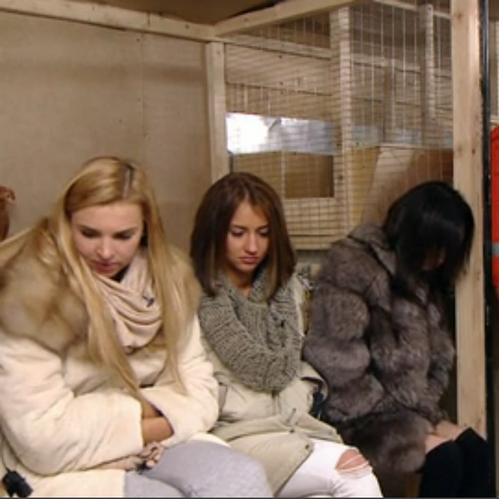 Дежурная часть томск задержание проституток