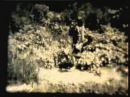 Пионерский лагерь «Орлёнок» Часть 2 Украина, Днепропетровская область, Новомоск...