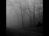 A Scanner Darkly -- Тур Ульвен оставил нас посреди Вселенной