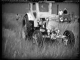 Скадовск - заготовка сена на острове Джарылгач 1974 год