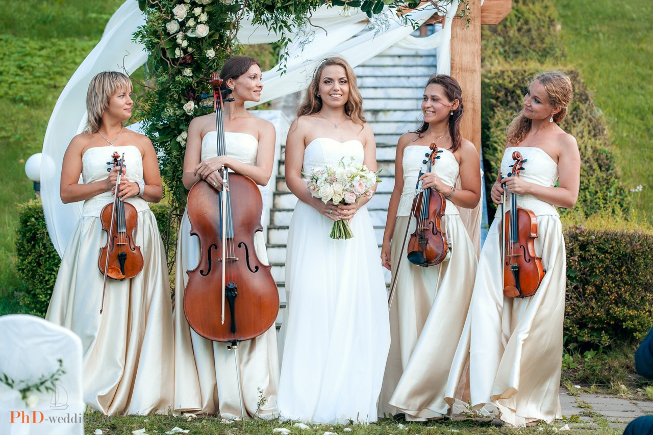 невеста и струнный квартет