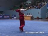 Национальный чемпионат Китая (2004год)