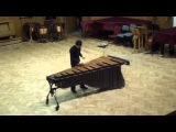 Breaking a mallet D White Knuckle Stroll by C.Cangelosi played by Miroslav Dimov