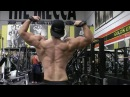 Sadik Hadzovic Back Workout - FitnessRx For Men
