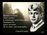 Песнь о собаке Стихи Сергея Есенина, Поёт Анна Резникова