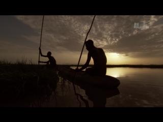 В дебрях Африки 12 Озеро Туркана - Земля крокодилов