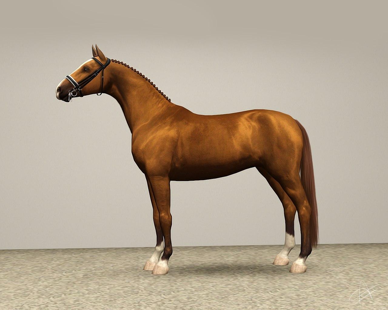 Регистрация лошадей в RHF 2 - Страница 2 Xh_cf_6tt8M