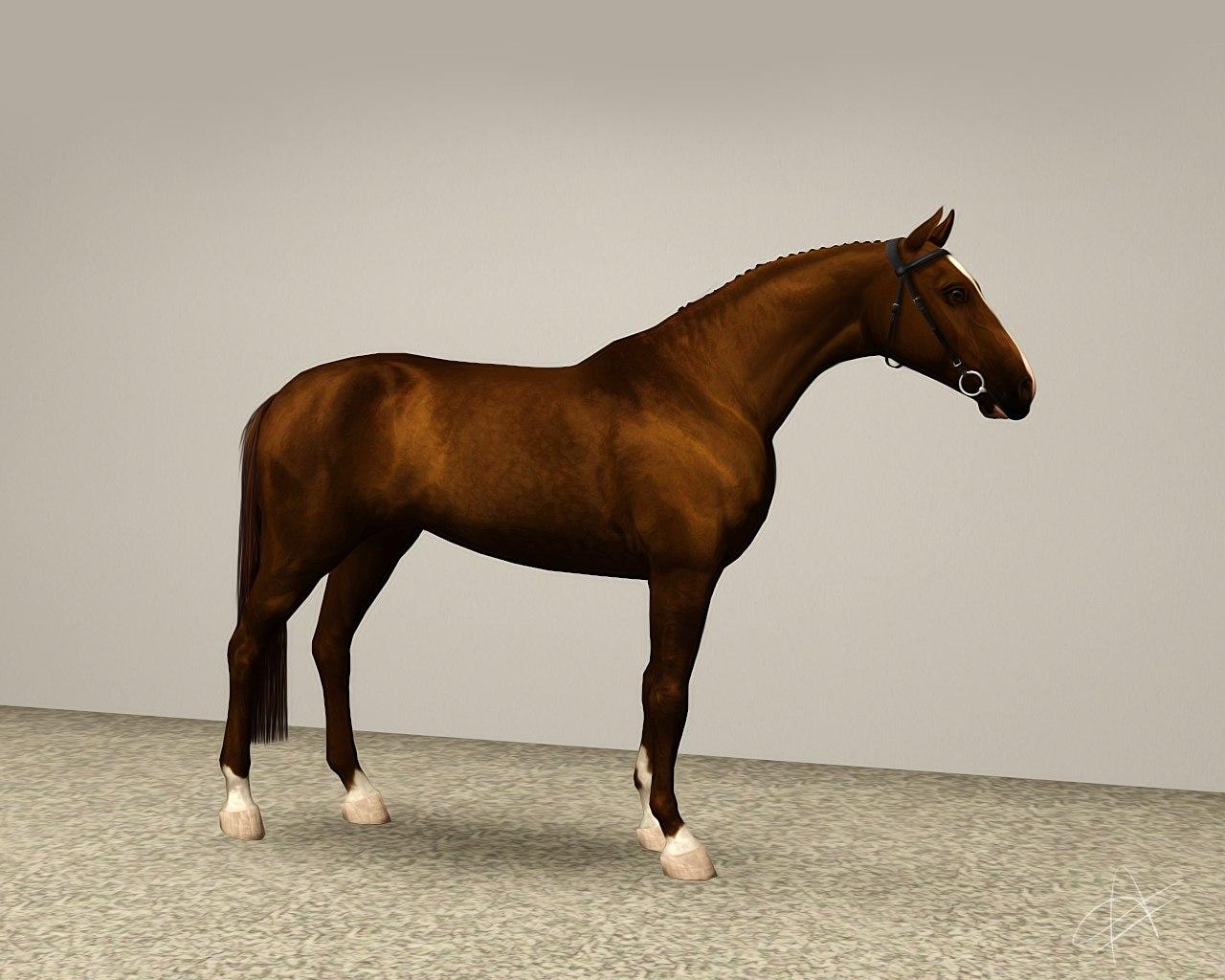 Регистрация лошадей в RHF 2 - Страница 2 W74uEMNDfiI