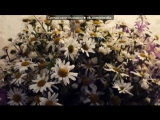 «Со стены друга» под музыку Детские песни - Усатый нянь. Picrolla