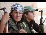Репортаж из Шангала и Кобани.