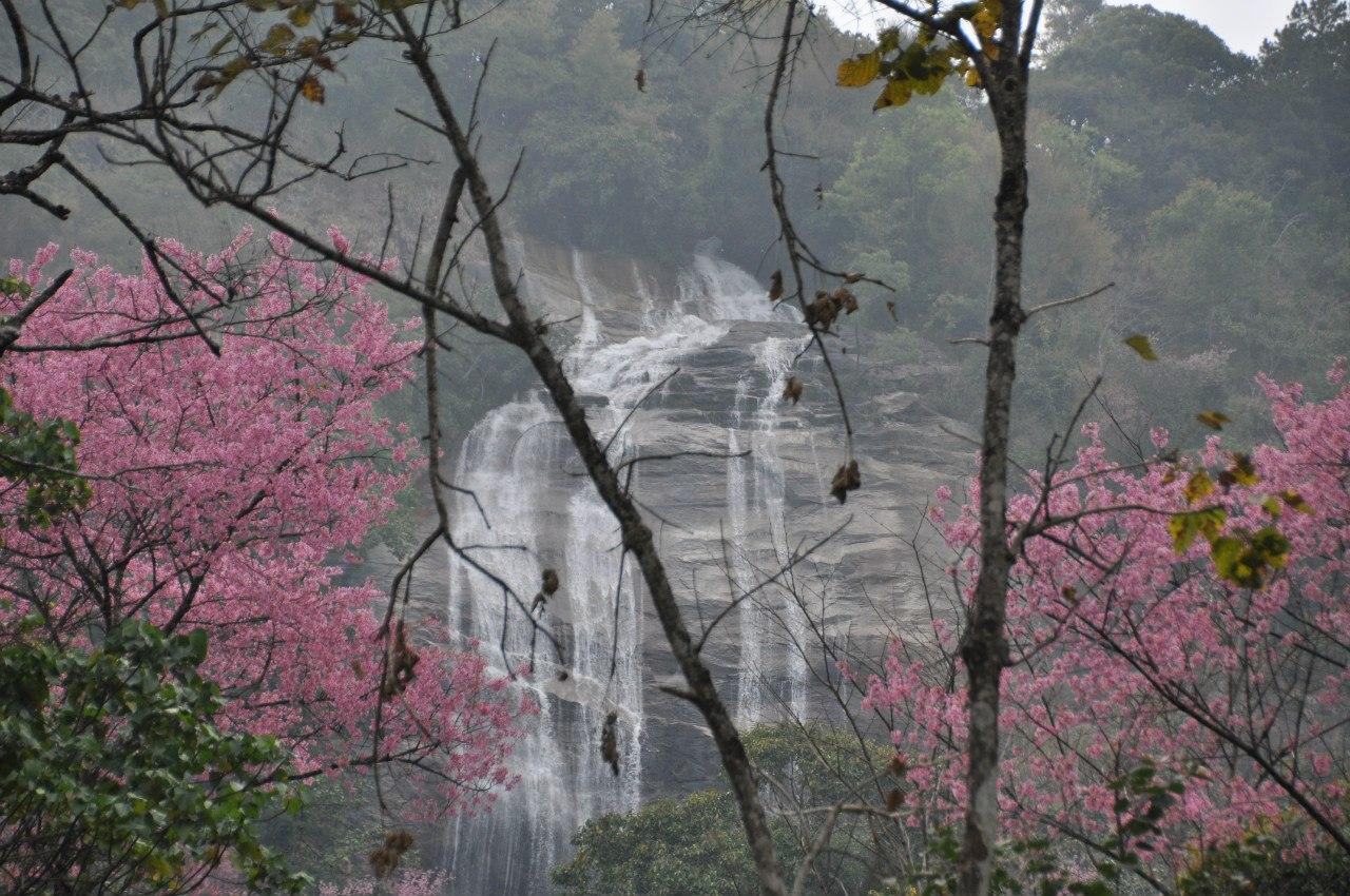 Siriphume Waterfall