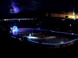 Выход команд на матче Сибирь(Новосибирская область)-Динамо(Минск)