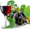 Самогоноварение и Виноделие