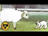 Мультики: Хочу бодаться  Сборник из трех мультфильмов
