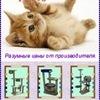 Домики для кошек с доставкой по России.
