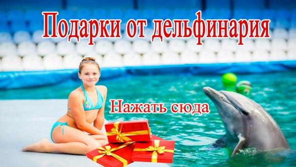 Подарки от дельфинария