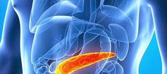Как уберечь поджелудочную железу от рака 107