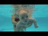 Newborn dives | Младенец ныряет. Как научить ребенка плавать เด็กฝรั่งว่ายน้ำ