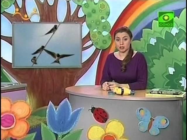 Шишкина Школа Природоведение Урок 39 Перелётные птицы