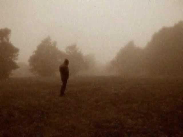 Woods Of Desolation - Somehow (w/ Lyrics)