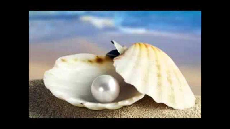 СУПЕР- Повседневная Медитация - Джо Витале, Хо'опонопоно
