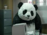 Самая няшная и смешная панда в рекламе!