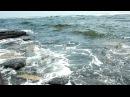 Тихий Океан 03 Шум волн Русский остров Лечебные звуки морского прибоя Без музыки Звуки океана