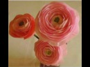 How to make Paper Flowers Ranunculus Persian Buttercup Flower 22