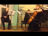 Maurice Ravel - Trio for piano, violin and cello in A minor. 1st part