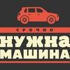 перевозка животных в Томске /благотворительность