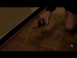 «Селфи из ада (18+)». Видео от 14 сентября 2015 HD.