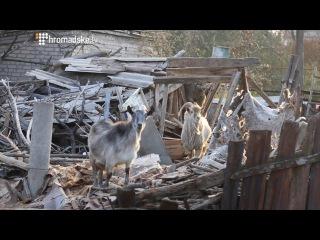 Територія великого вибуху. Сватове. Украина. 07.11.2015.