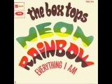 The Box Tops - Neon Rainbow