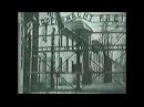 МИФ О ХОЛОКОСТЕ евреев создан Сионистами СССР потерял в войне 27 миллионов человек