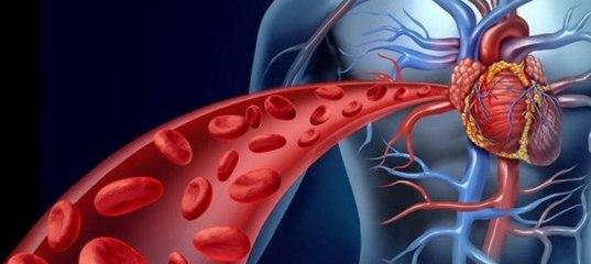 Koroner Arter Hastalığı Nedir Belirtileri Risk Faktörleri