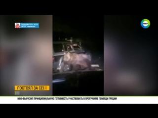На Сахалине живодеры проехались по медведю на внедорожнике