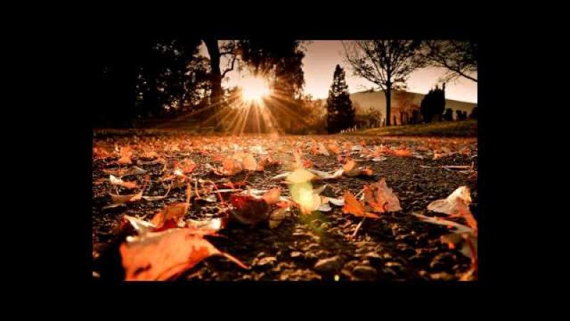 Filodorima Осень